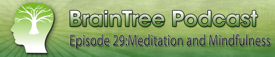Episode 29 – Meditation and Mindfulness
